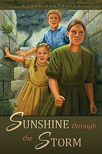 cover image of Sunshine Through the Storm